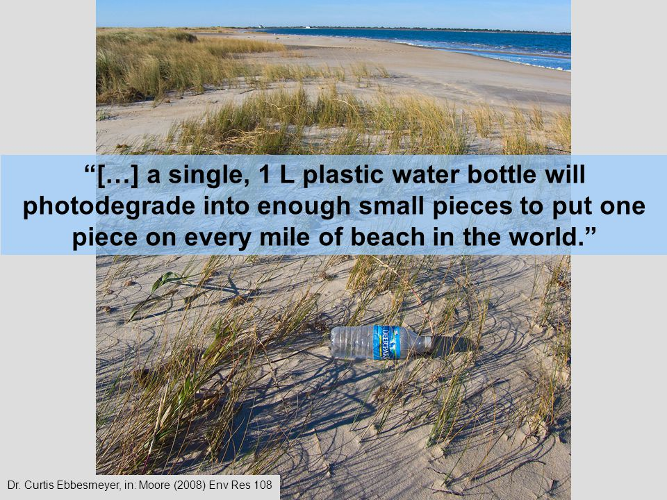 […] a single, 1 L plastic water bottle will photodegrade into enough small pieces to put one piece on every mile of beach in the world.